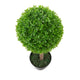 Artificial 2ft Boxwood Ball Tree Pair