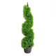 Artificial 3ft Boxwood Spiral Tree Pair