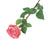 Artificial 72cm Single Stem Fully Open Dusky Pink Rose Closer2Nature