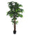 Artificial 6ft Mango Tree - Closer2Nature
