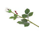 Artificial 60cm Single Stem Closed Bud Ivory Rose Closer2Nature