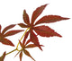 Artificial 4ft 6″ Russet Brown Japanese Maple Tree - Closer2Nature