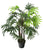 Artificial 3ft Lady Palm Tree - Closer2Nature
