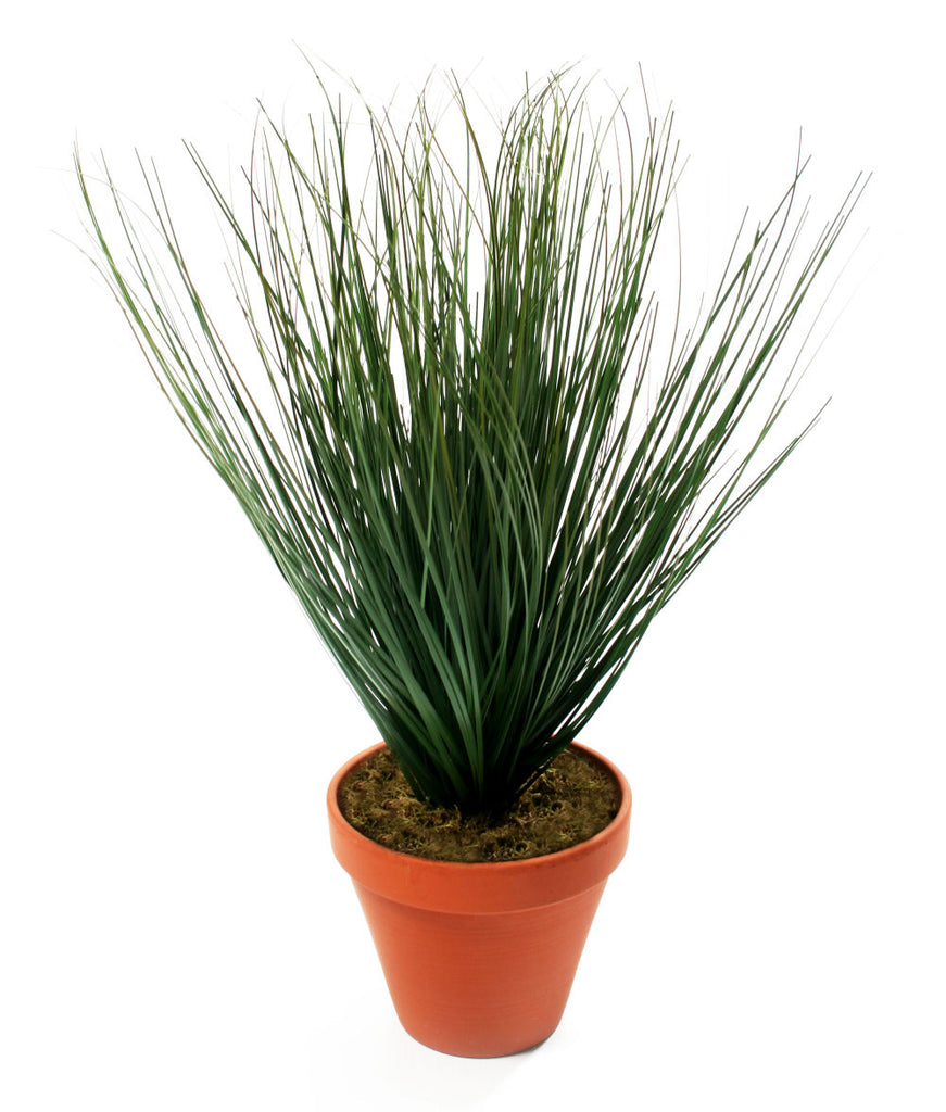 Artificial 1ft Onion Grass Plant - Closer2Nature