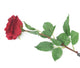 Artificial 72cm Single Stem Fully Open Deep Red Rose - Closer2Nature