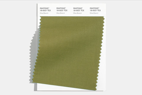 Pantone olive branch green color swatch