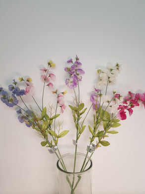 Sweetpea Stems (5 Assorted Colours)