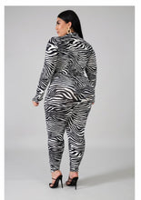 Load image into Gallery viewer, Zebra Bodysuit & Pant Set Plus