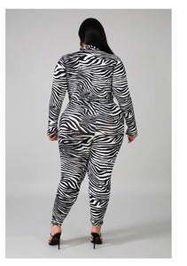 Zebra Bodysuit & Pant Set Plus