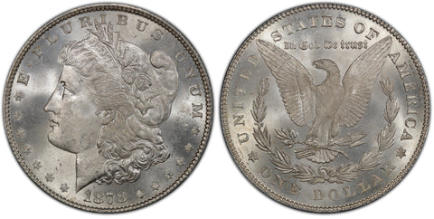 1878 7TF Morgan Silver Dollar (1 of 50)  - (R5)  - As part of the (50) and (10) coin set, this coin is available. As a single coin purchase in this venue, refer below.