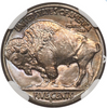 Image of THE Only One – 1917-S Buffalo Nickel NGC MS67