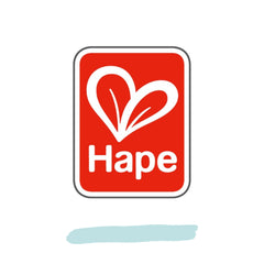 hape-wooden-toys-australia-playdreamers-toy-store
