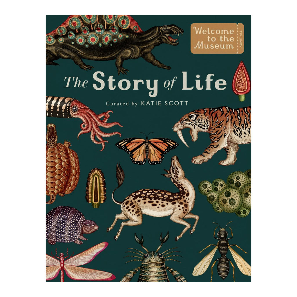 Story of Life: Evolution (Extended Edition) - Katie Scott