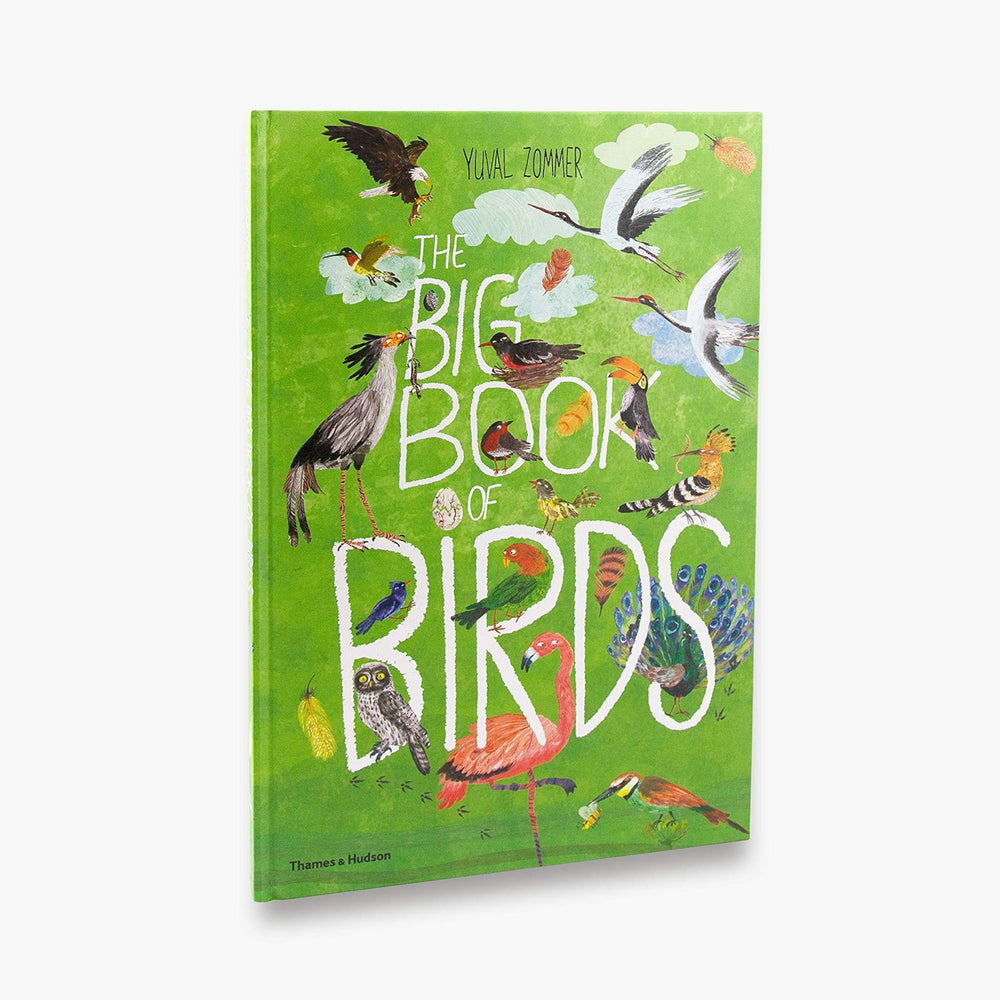 The Big Book of Birds | Yuval Zommer