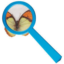 Small Magnifying Glass
