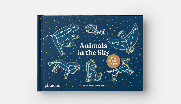 Animals in the Sky | Sara Gillingham