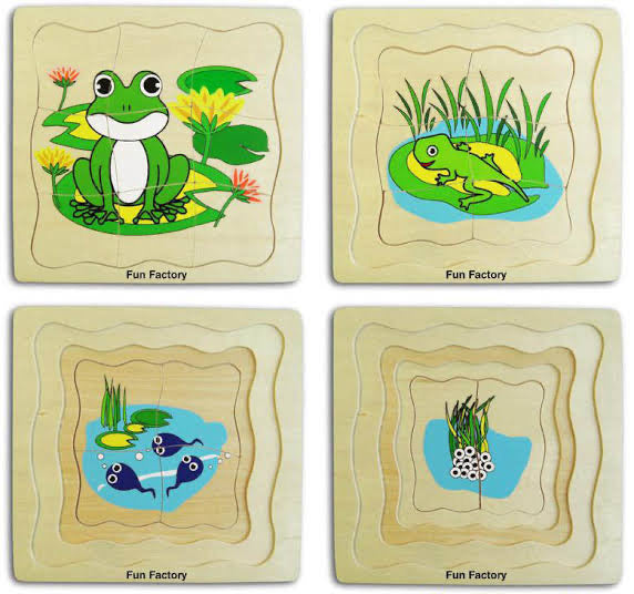 Frog Life Cycle Layer Puzzle | Wooden