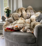 Coyote Fur Blanket