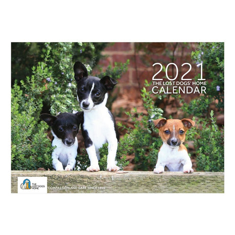 The Lost Dogs' Home 2021 Calendar