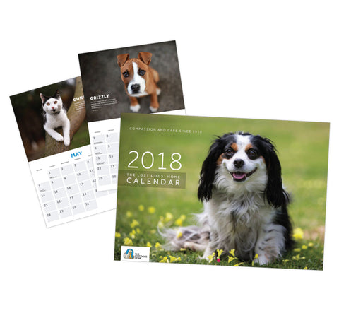 The Lost Dogs' Home 2018 Calendar - SOLD OUT