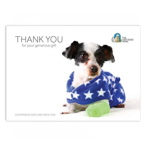 'Animal Emergency Treatment' Gift Card