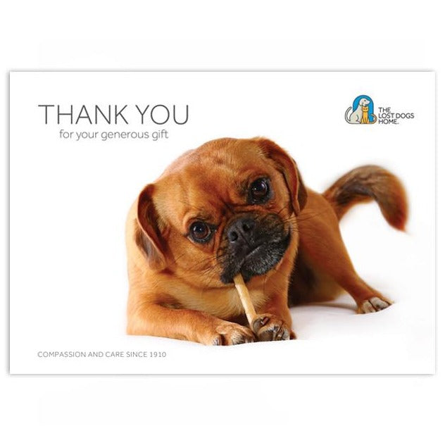 'Sweet Treats For Behaviour Rehabilitation Dogs' Gift Card