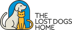 The Lost Dogs' Home