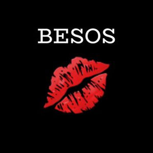 The Besos Collection