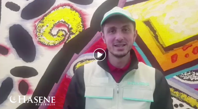 Video messages from our Qurban volunteers