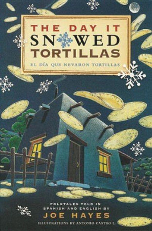 Book cover of Southwestern style home with snowflakes and falling tortillas