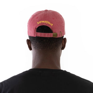 Save the Planet Dad Hat (Red)