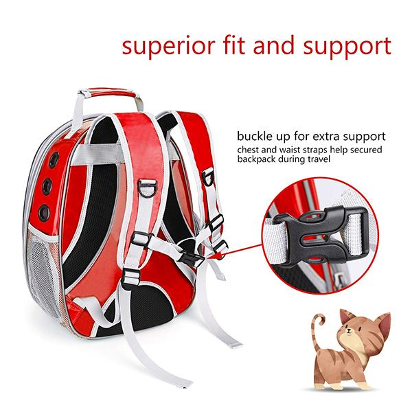 Transparent Pet Breathable Backpack