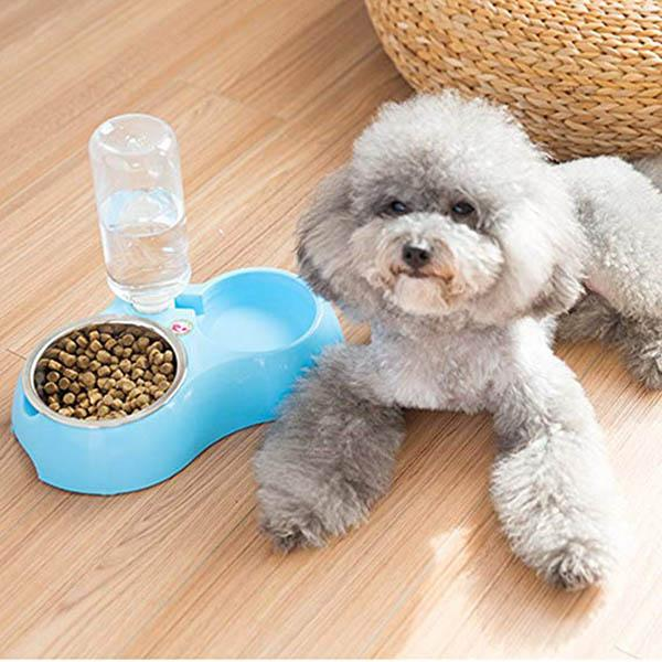 Double Bowls Of Automatic Drinking Water For Pets