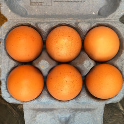 Large, Local Free Range Eggs x6