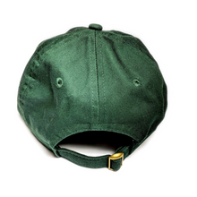 Load image into Gallery viewer, WIS[]SIN, Green, Gold, Baseball Cap