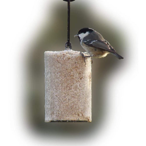 Hanging Suet Logs - gbfeeders