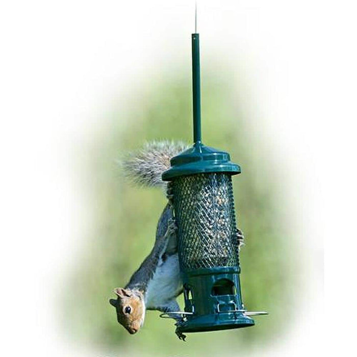 Squirrel Proof Feeders The Squirrel Buster