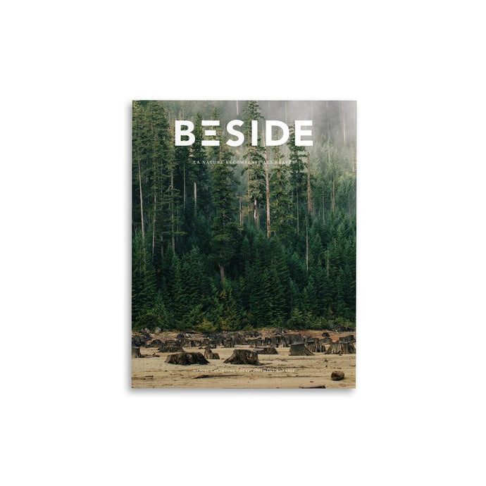 REVUE BESIDE - 02