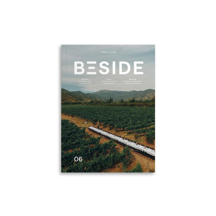 REVUE BESIDE - 06