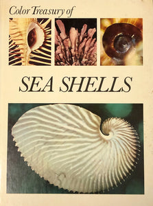 Color Treasury of Sea Shells