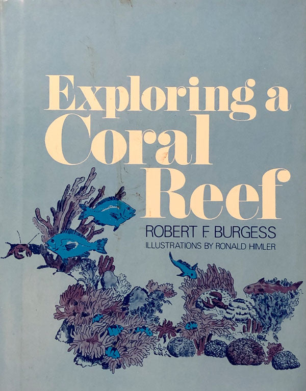 Exploring A Coral Reef