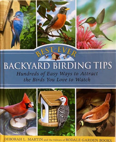 Backyard Birding Tips