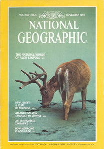 National Geographic: Nov. 1981