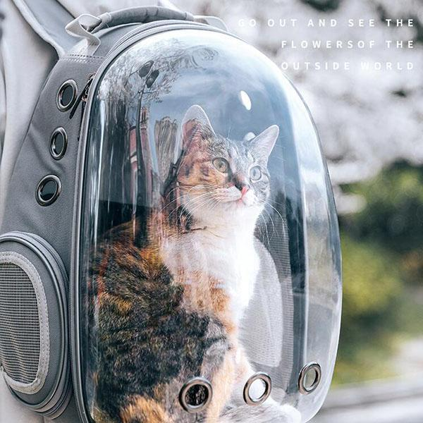 Space Cat Pet Bag