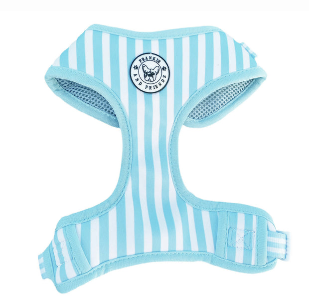 Blue Candy Stripe - Adjustable Harness