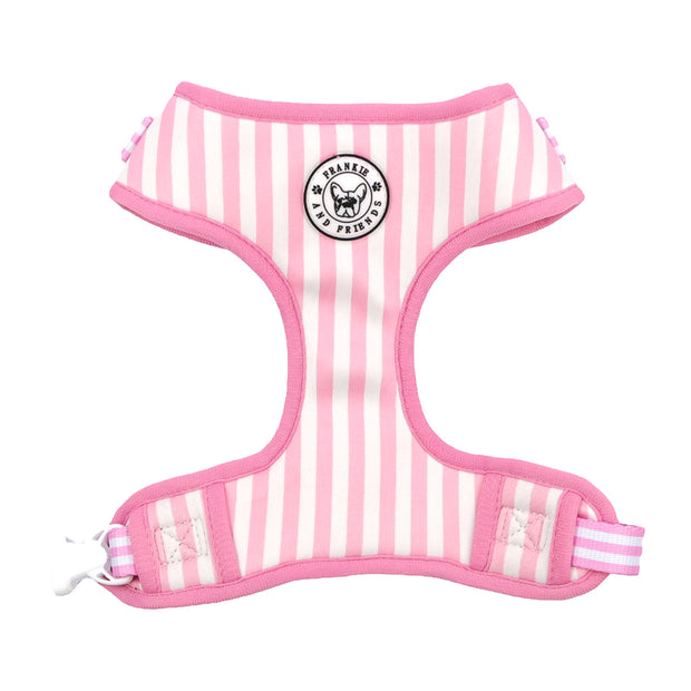 Pink Candy Stripe - Adjustable Harness