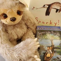 Sloth Book and Bear Box with both picture and chapter books