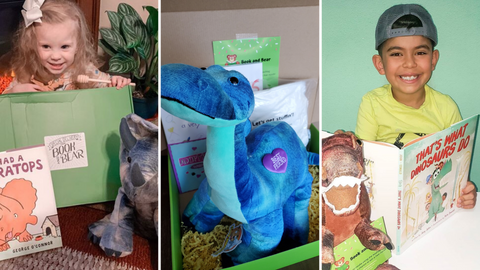 Dinosaur Book and Bear Boxes featuring Triceratops, Brachiosaurus and T-Rex