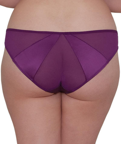 "Scantilly Peek A Boo Brief - Violet ""back"""