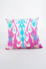 Zippy ikat Cushion